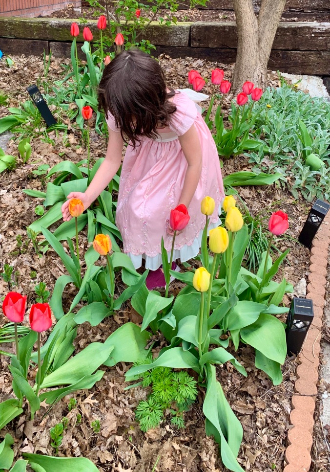 Lydia in her Easter dress amid tulips