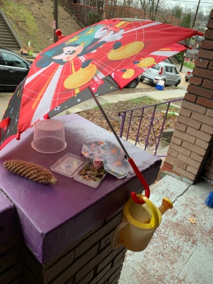 a Mickey Mouse umbrella is opened onto a porch pillar; a plastic watering can dangles by its handle from the umbrella handle; under the umbrella, a small pink toy bunny with a flannel hanky draped over its shoulders appears to be eating leaves placed in the plastic box from a deck of playing cards; a pine cone and a take-out soup bucket also are present
