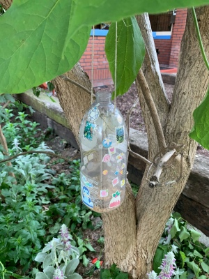 plastic bottle with hole cut in one side, bread crumbs in bottom, assorted stickers stuck all over it, and a loop of twine passing through the top and hanging over a branch of a catalpa tree