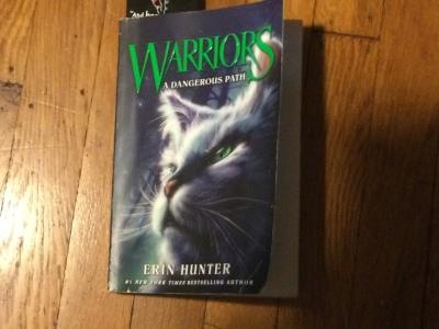 the book Warriors: A Dangerous Path by Erin Hunter